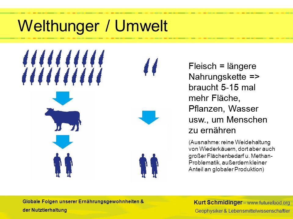 Welthunger / Umwelt Fleisch = längere Nahrungskette => braucht 5-15 mal mehr Fläche, Pflanzen, Wasser usw., um Menschen zu ernähren.