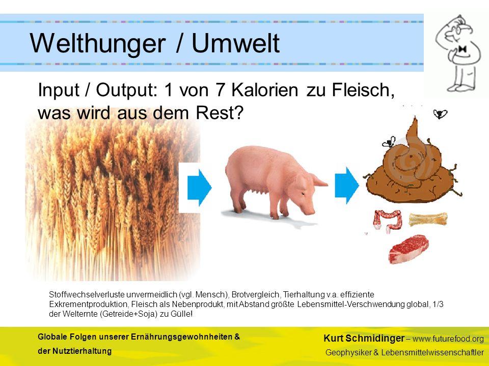 Welthunger / Umwelt Input / Output: 1 von 7 Kalorien zu Fleisch, was wird aus dem Rest