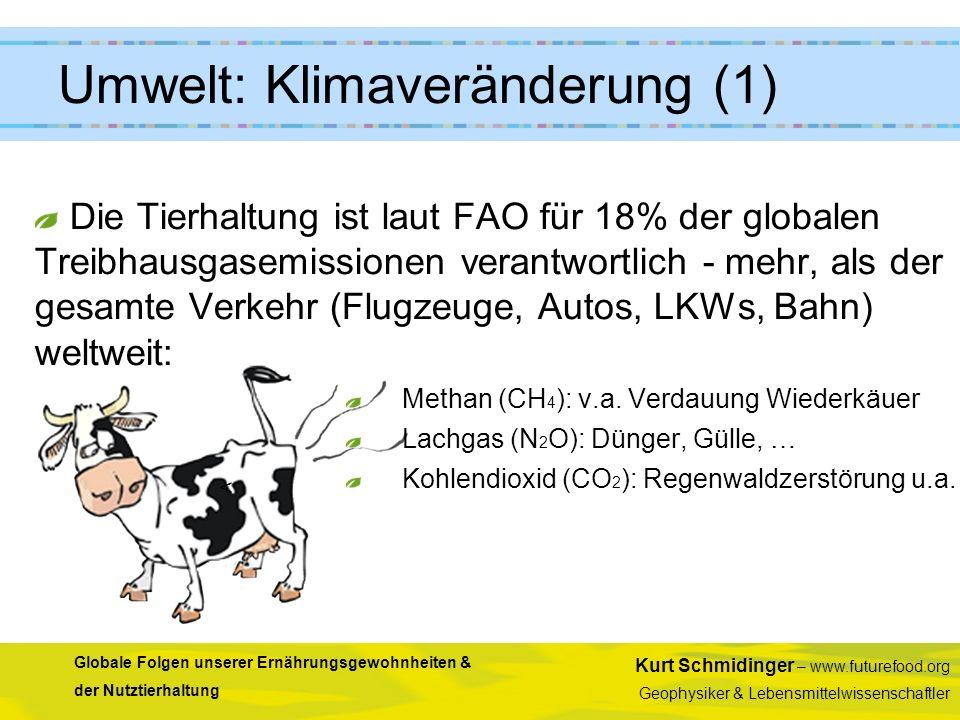Umwelt: Klimaveränderung (1)