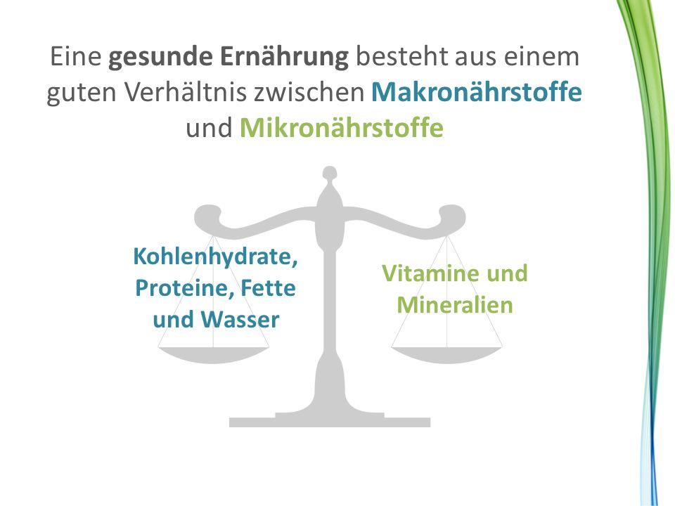 Kohlenhydrate, Proteine, Fette und Wasser Vitamine und Mineralien