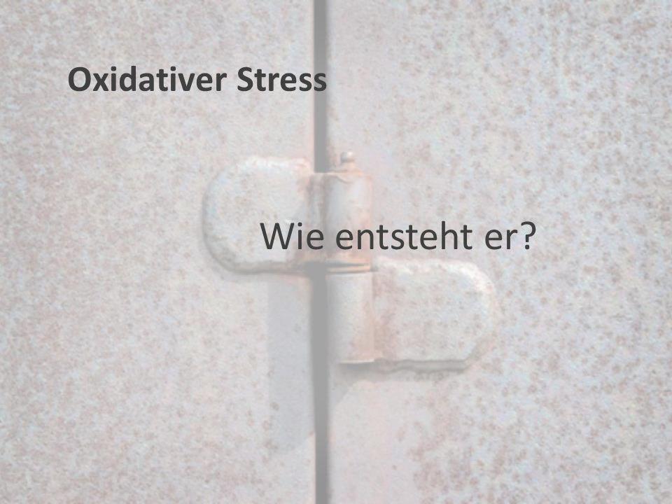Oxidativer Stress Wie entsteht er