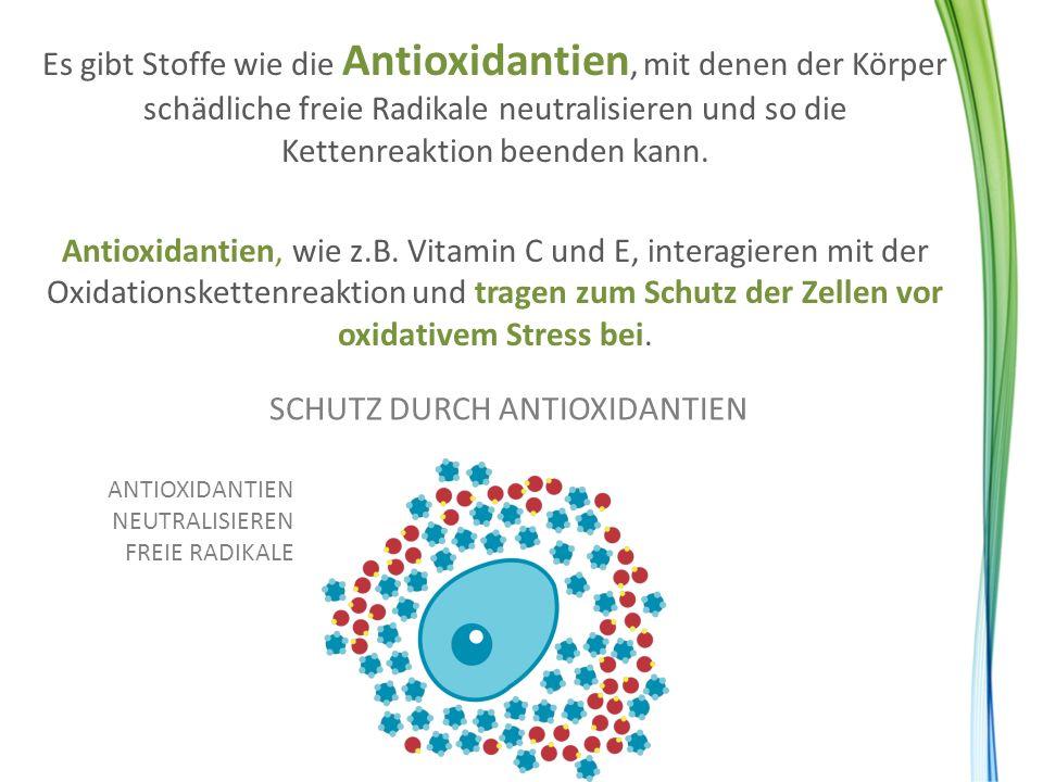 SCHUTZ DURCH ANTIOXIDANTIEN