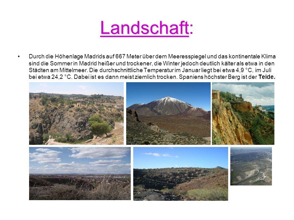 Landschaft: