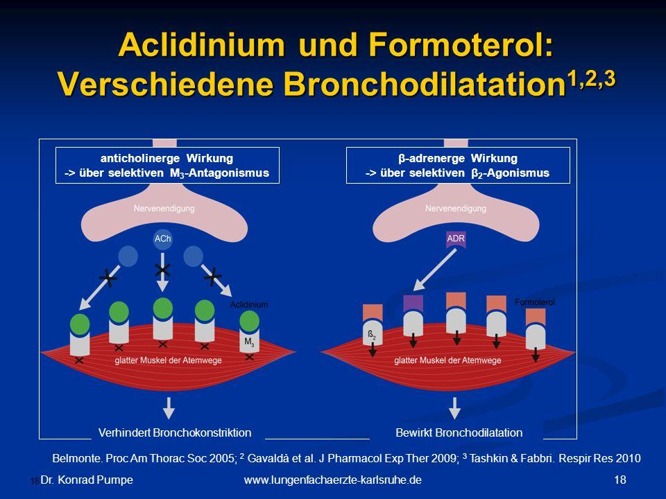 Aclidinium und Formoterol: Verschiedene Bronchodilatation1,2,3