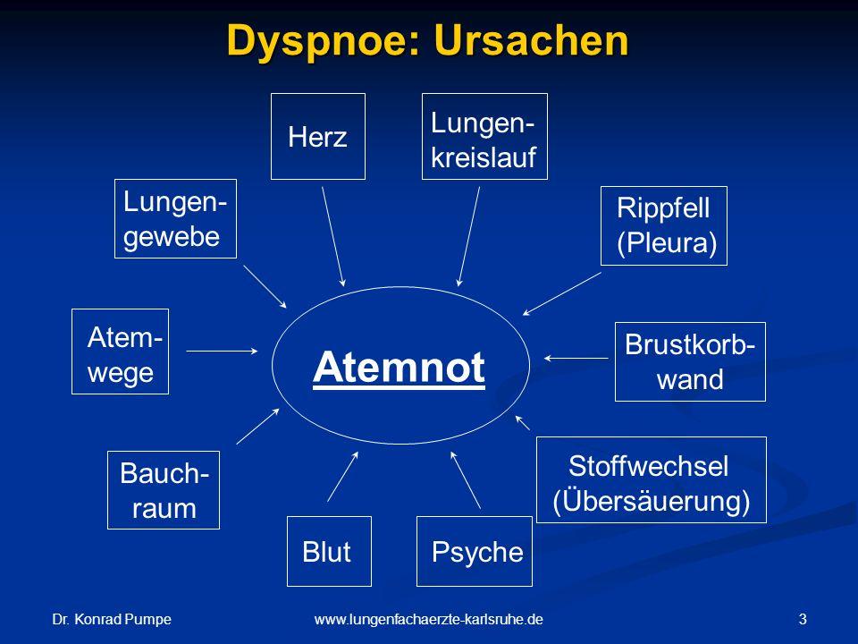 Dyspnoe: Ursachen Atemnot Lungen-kreislauf Herz Lungen-gewebe