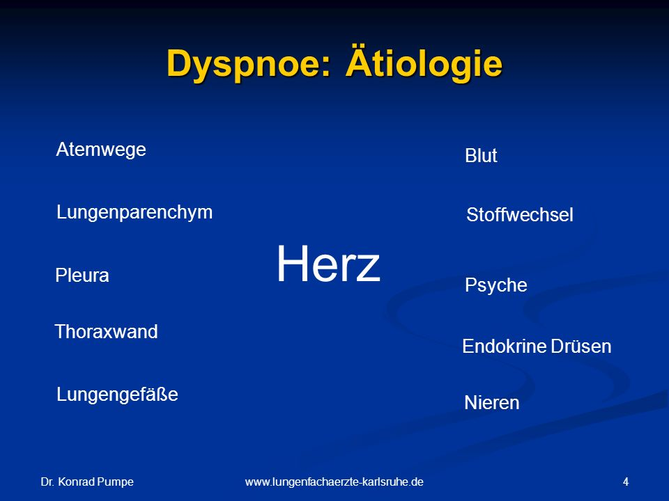 Herz Dyspnoe: Ätiologie Atemwege Blut Lungenparenchym Stoffwechsel
