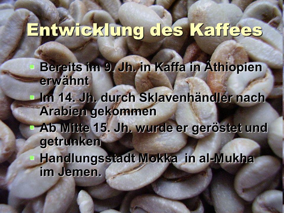 Entwicklung des Kaffees
