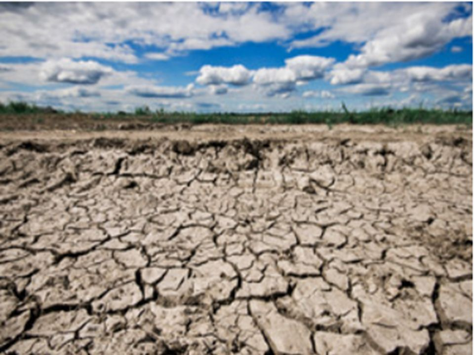 Bereits erkennbare Folgen des Klimawandels: In Californien treten seit einigen Jahre immer häufiger und länger Dürreperioden auf.