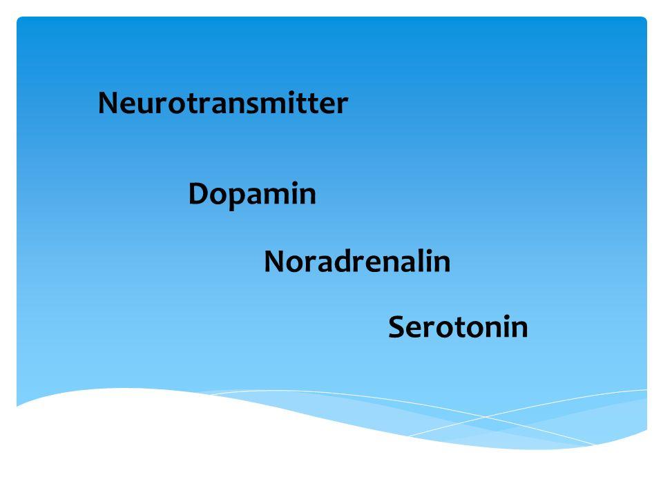 Neurotransmitter Dopamin Noradrenalin Serotonin