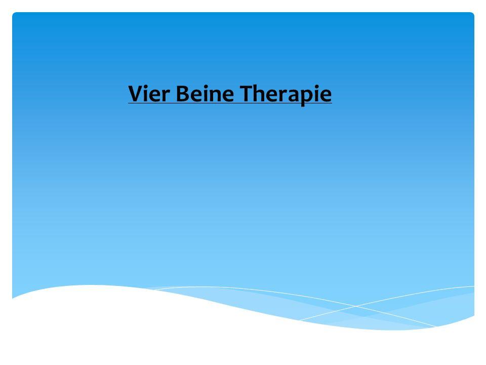 Vier Beine Therapie