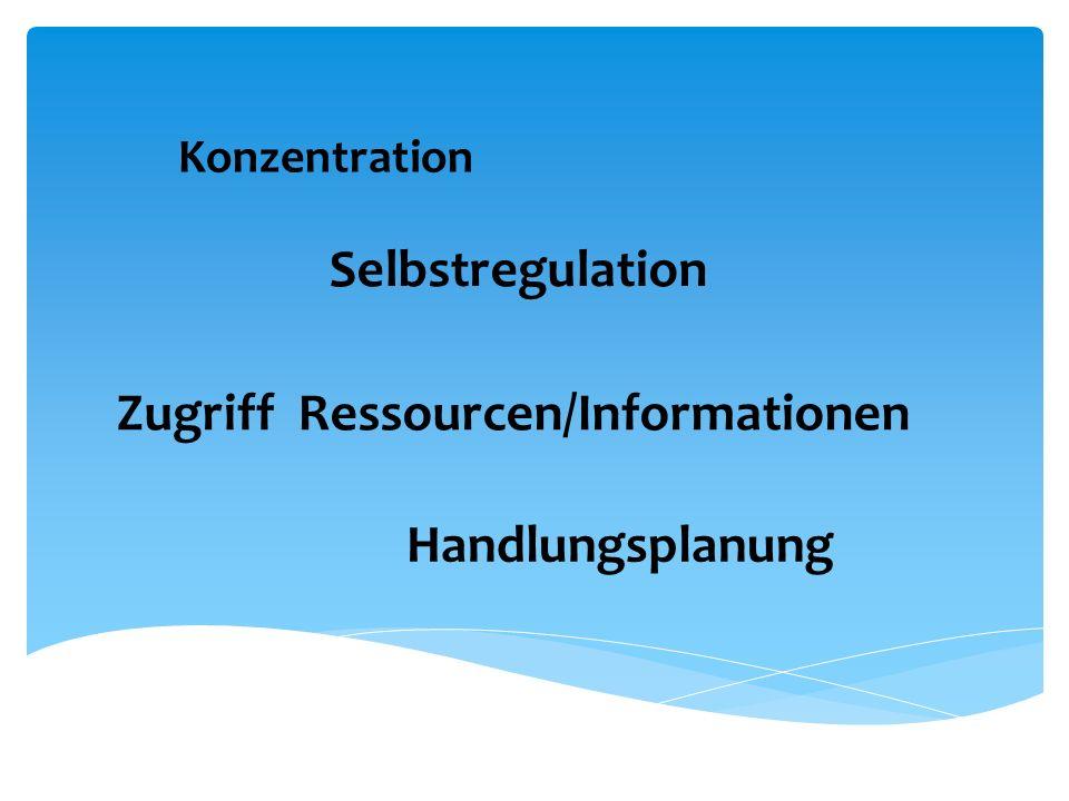 Zugriff Ressourcen/Informationen