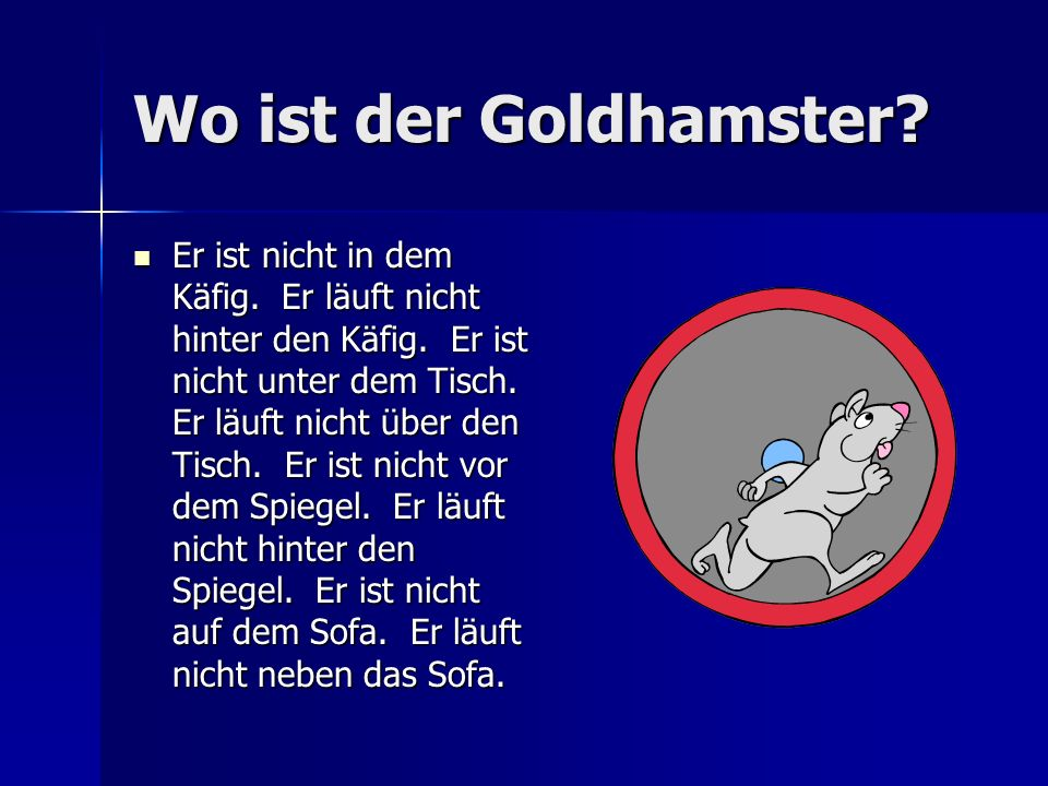 Wo ist der Goldhamster
