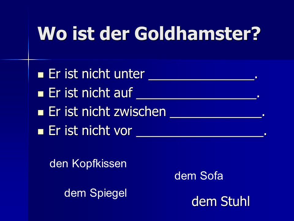 Wo ist der Goldhamster Er ist nicht unter _______________.
