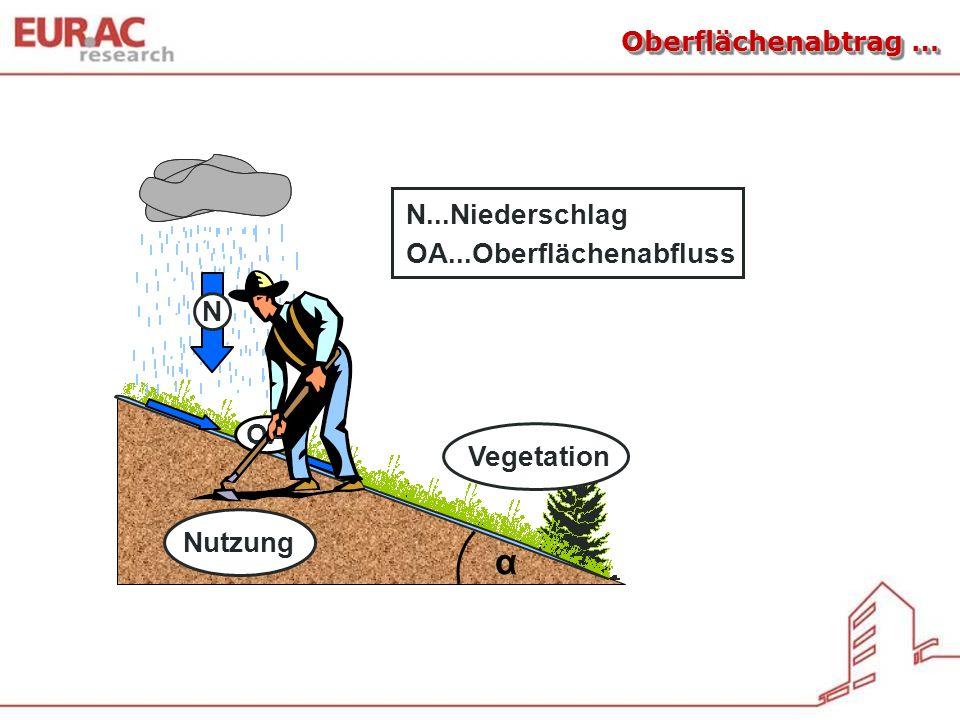 α N...Niederschlag OA...Oberflächenabfluss N OA Vegetation Nutzung