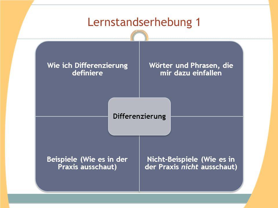 Lernstandserhebung 1 Differenzierung Wie ich Differenzierung definiere