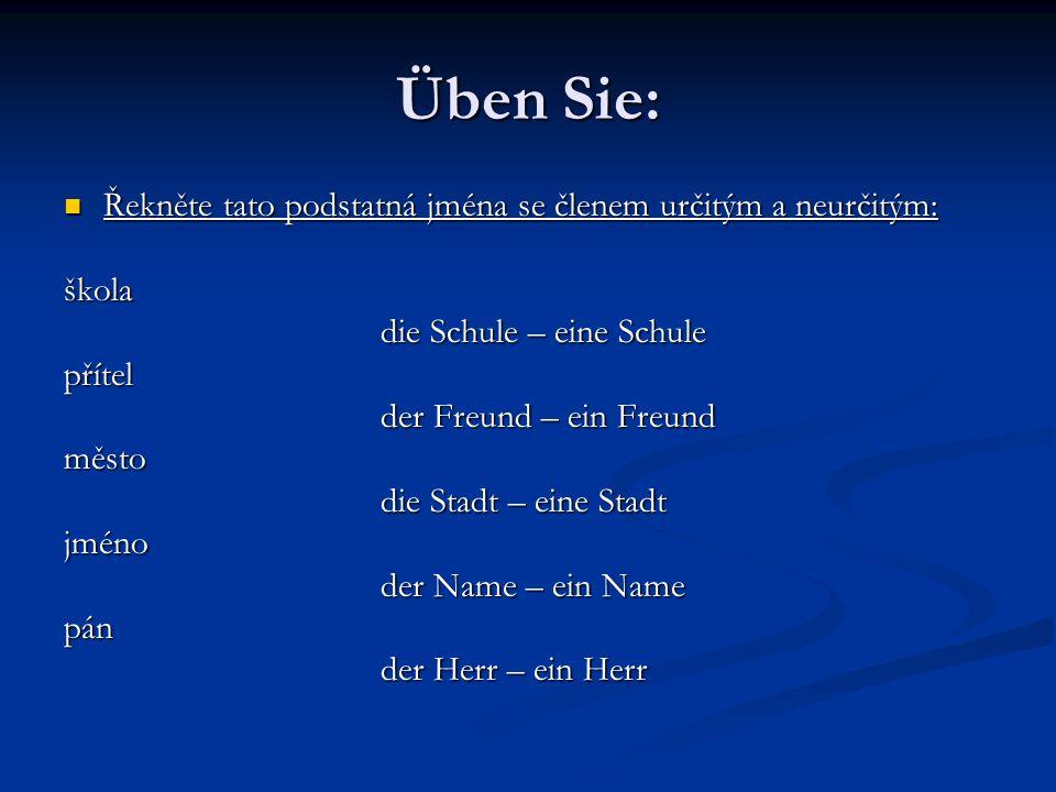 Üben Sie: Řekněte tato podstatná jména se členem určitým a neurčitým: