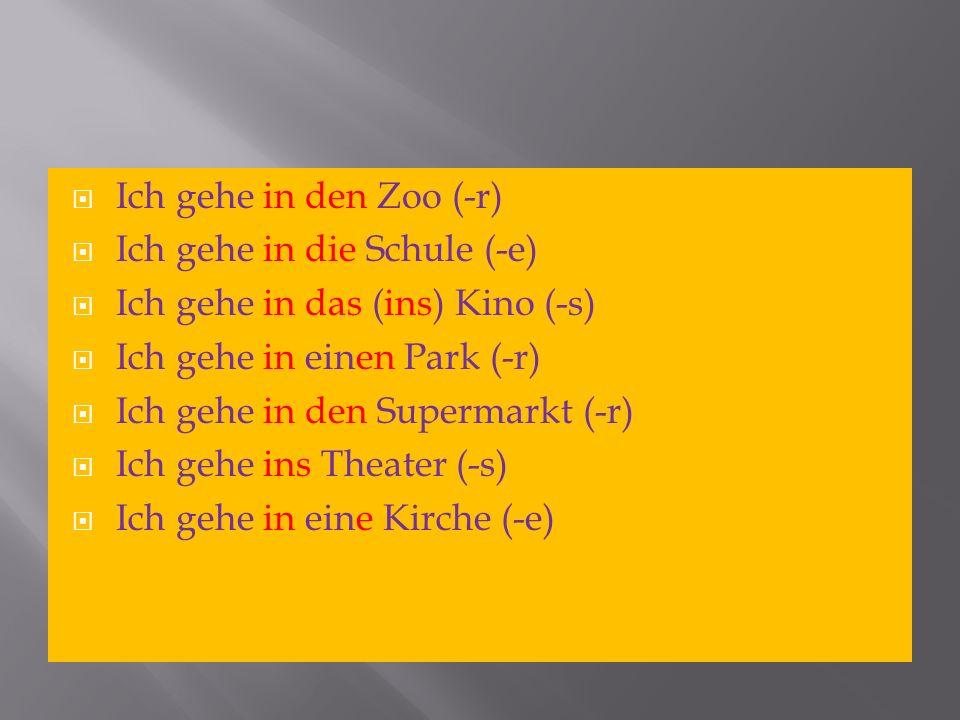 Ich gehe in den Zoo (-r)Ich gehe in die Schule (-e) Ich gehe in das (ins) Kino (-s) Ich gehe in einen Park (-r)