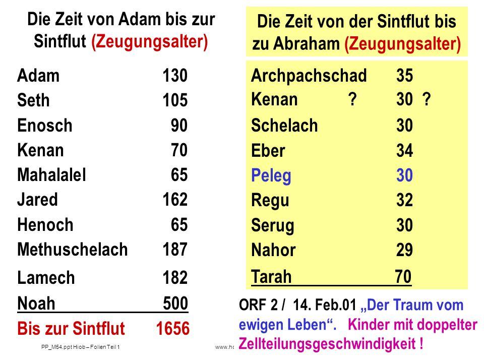 Die Zeit von Adam bis zur Sintflut (Zeugungsalter)
