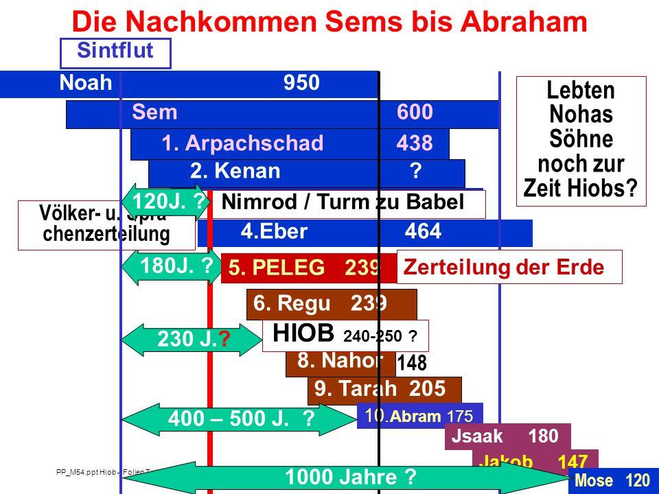 Die Nachkommen Sems bis Abraham