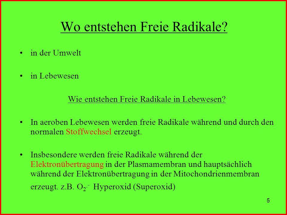 Wo entstehen Freie Radikale