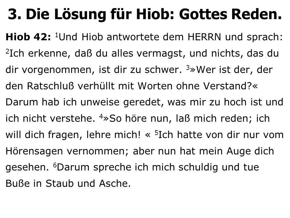 3. Die Lösung für Hiob: Gottes Reden.