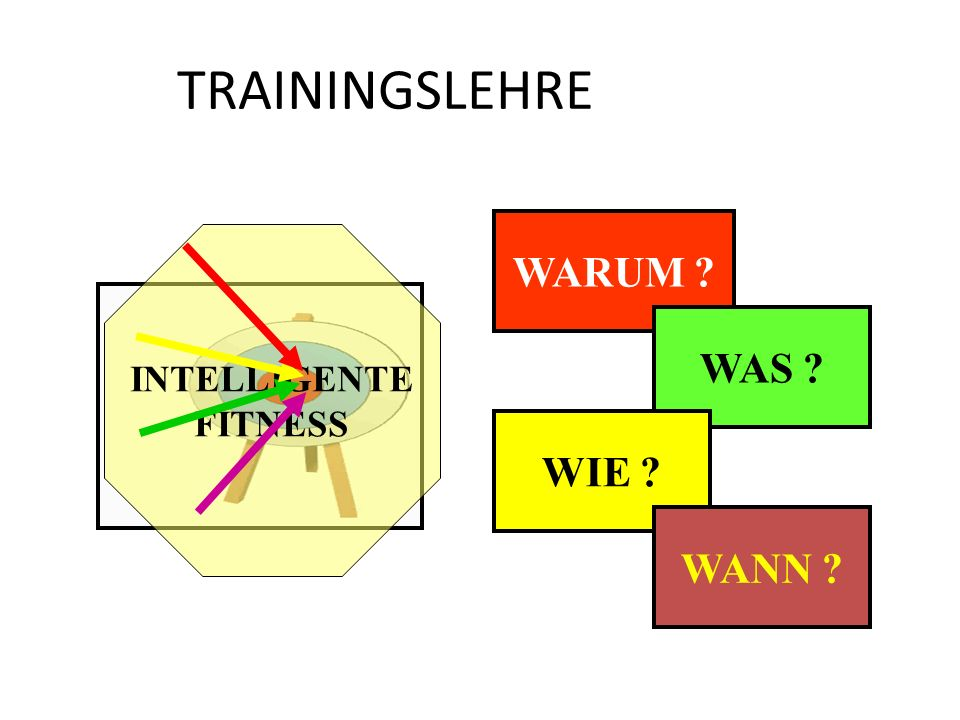 TRAININGSLEHRE WARUM INTELLIGENTE FITNESS WAS WIE WANN