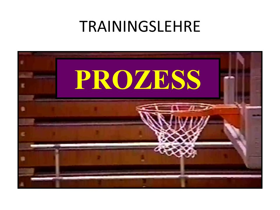 TRAININGSLEHRE TRAINING PROZESS