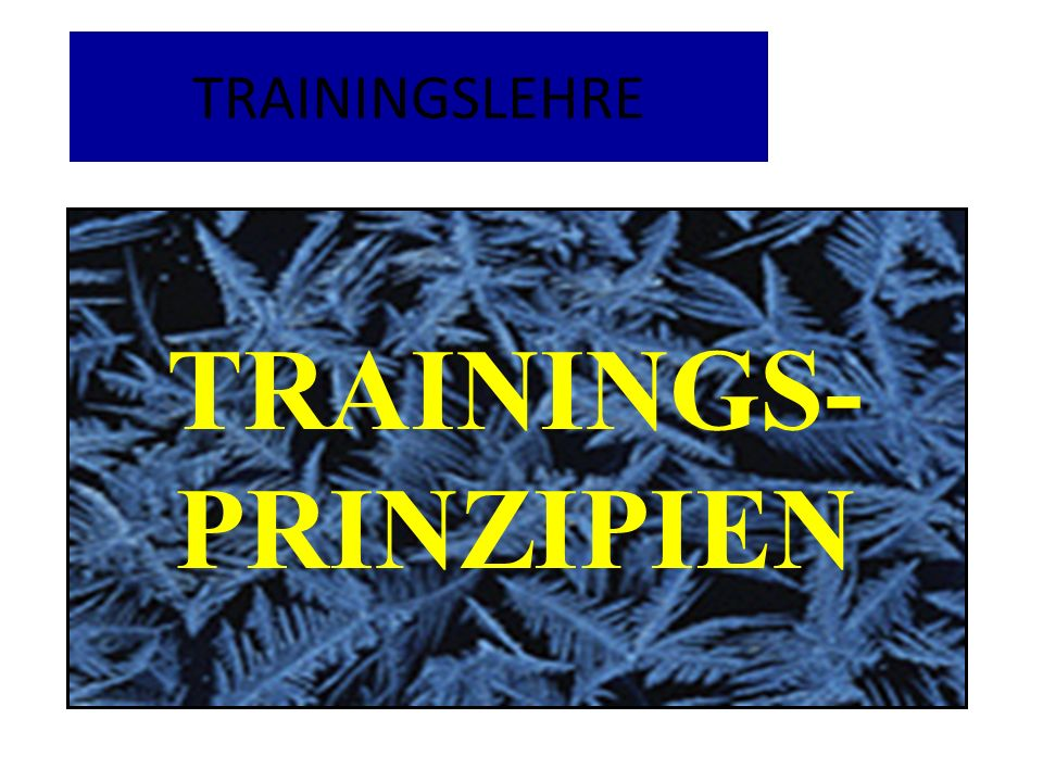 TRAININGS- PRINZIPIEN