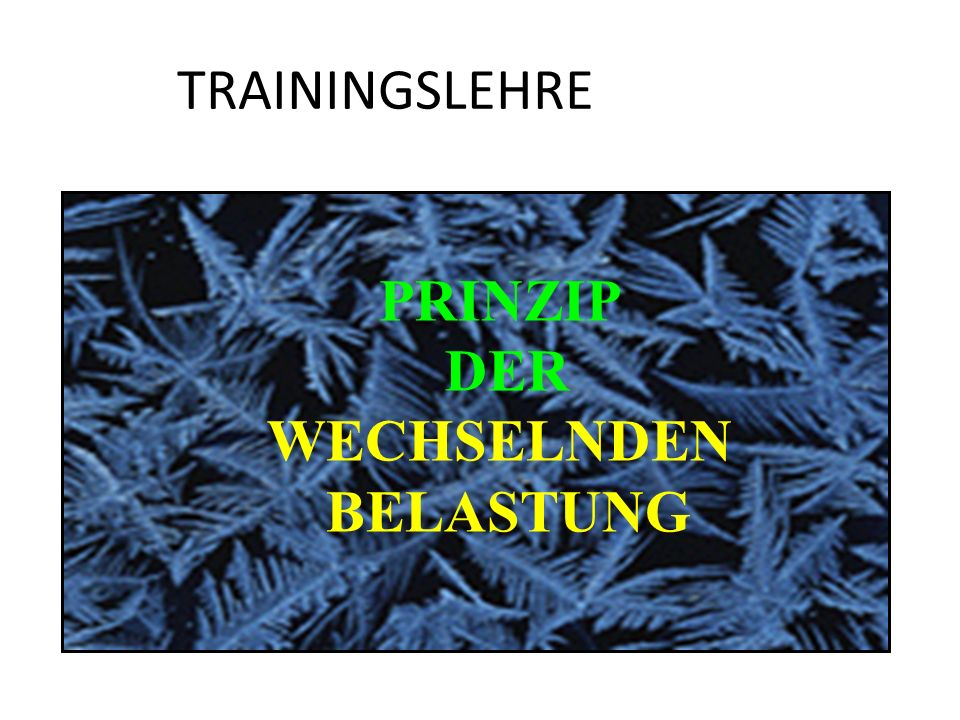 TRAININGSLEHRE PRINZIP DER WECHSELNDEN BELASTUNG