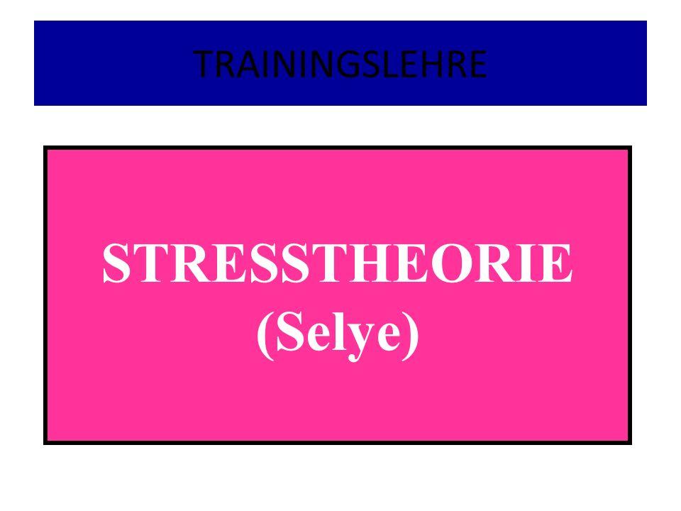 STRESSTHEORIE (Selye)