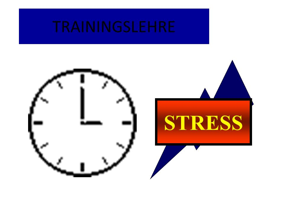TRAININGSLEHRE STRESS