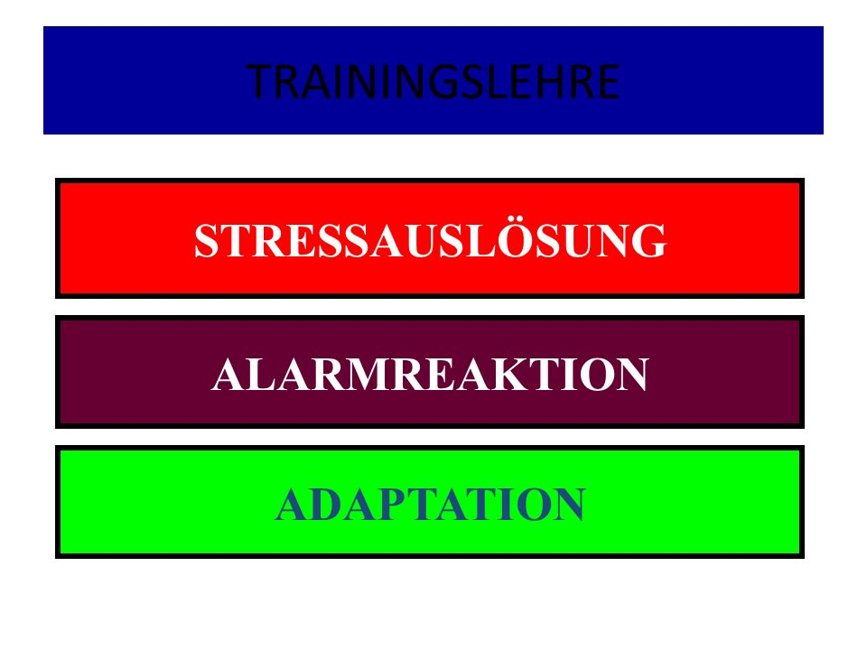 TRAININGSLEHRE STRESSAUSLÖSUNG ALARMREAKTION ADAPTATION