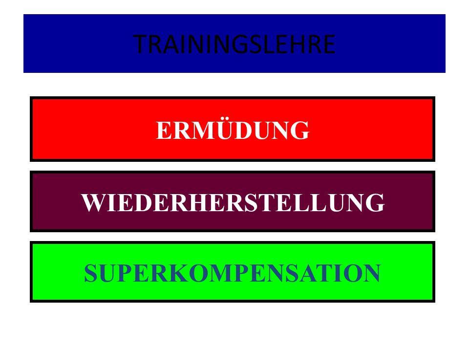 TRAININGSLEHRE ERMÜDUNG WIEDERHERSTELLUNG SUPERKOMPENSATION