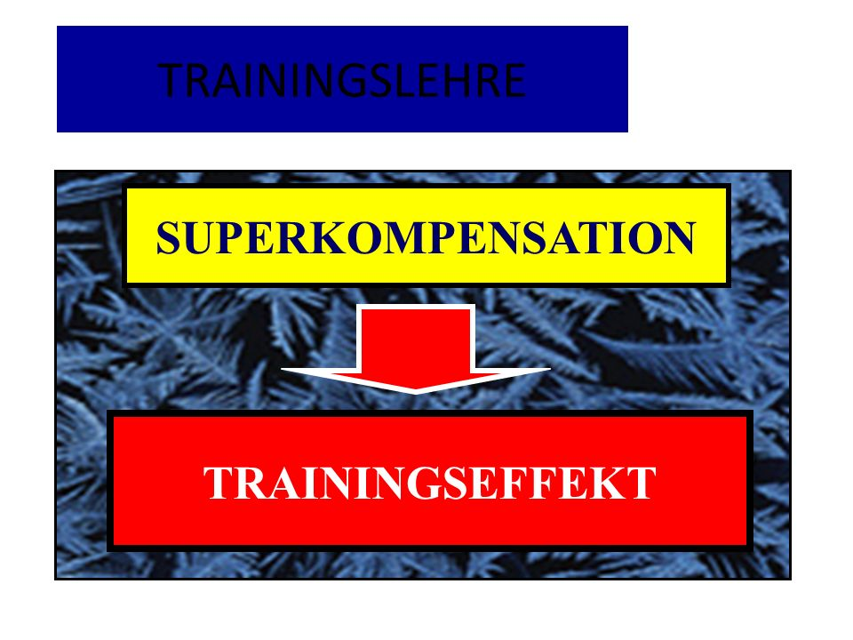 TRAININGSLEHRE SUPERKOMPENSATION ÜBERSCHIESZENDE TRAININGSEFFEKT