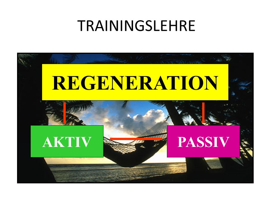 TRAININGSLEHRE REGENERATION AKTIV PASSIV