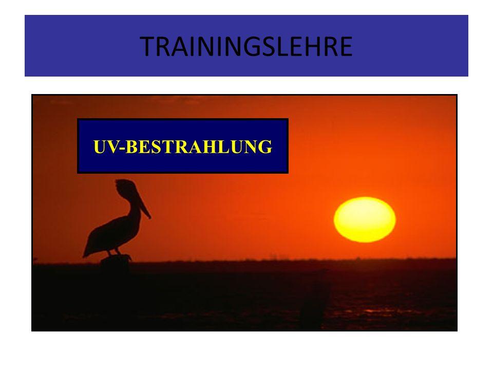 TRAININGSLEHRE UV-BESTRAHLUNG