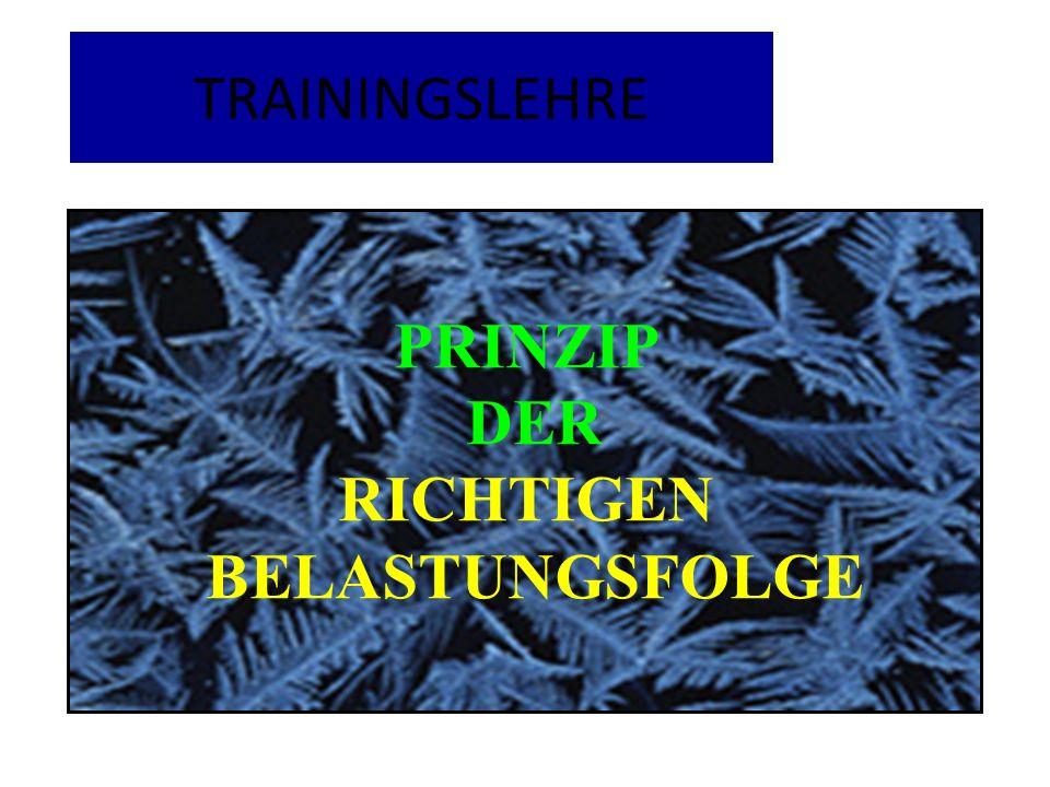 TRAININGSLEHRE PRINZIP DER RICHTIGEN BELASTUNGSFOLGE