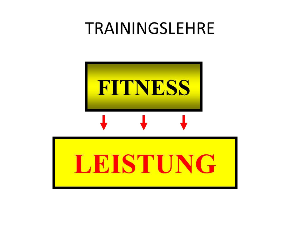 TRAININGSLEHRE FITNESS LEISTUNG