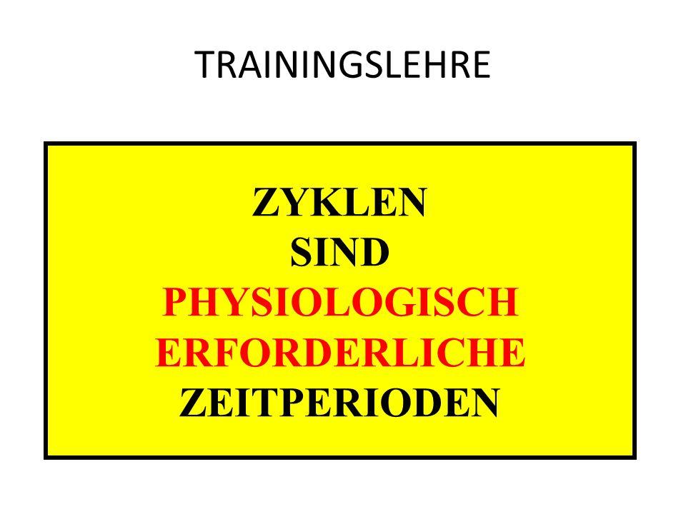 TRAININGSLEHRE ZYKLEN SIND PHYSIOLOGISCH ERFORDERLICHE ZEITPERIODEN