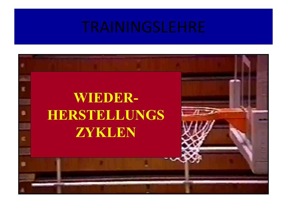 TRAININGSLEHRE WIEDER- HERSTELLUNGS ZYKLEN