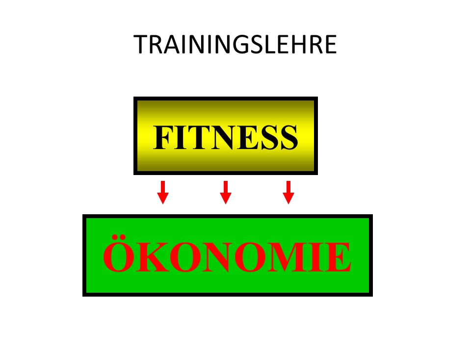 TRAININGSLEHRE FITNESS ÖKONOMIE