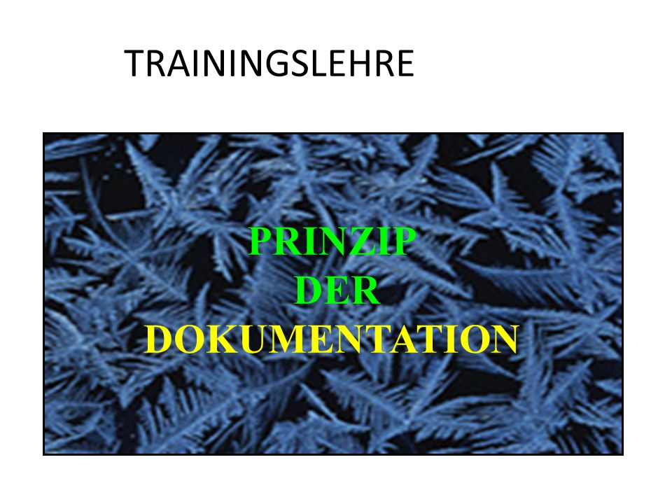 TRAININGSLEHRE PRINZIP DER DOKUMENTATION