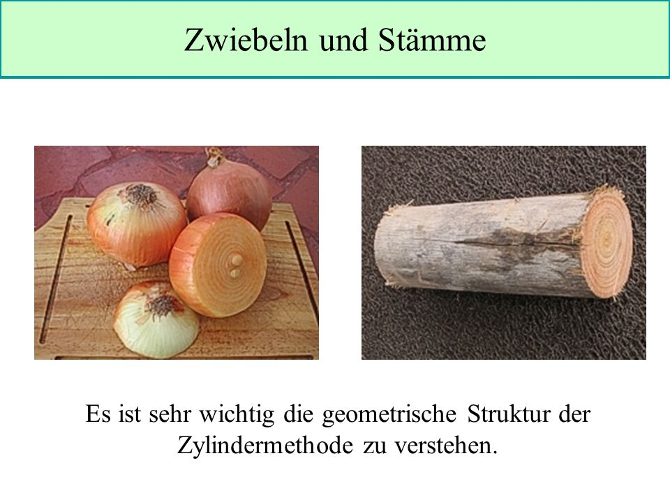 Zwiebeln und Stämme Es ist sehr wichtig die geometrische Struktur der Zylindermethode zu verstehen.
