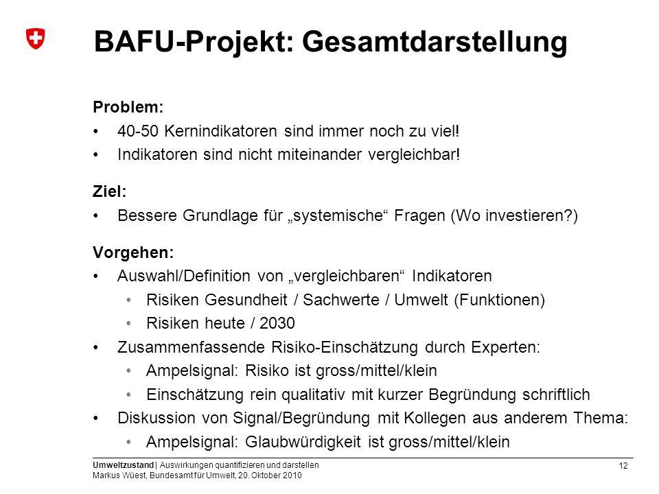 BAFU-Projekt: Gesamtdarstellung
