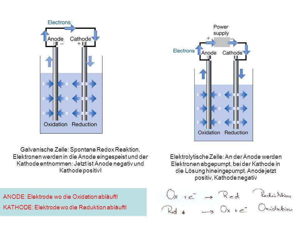 Galvanische Zelle: Spontane Redox Reaktion, Elektronen werden in die Anode eingespeist und der Kathode entnommen: Jetzt ist Anode negativ und Kathode positiv!