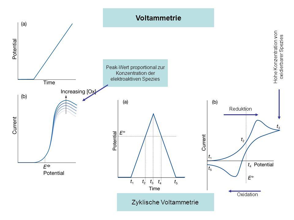 Voltammetrie Zyklische Voltammetrie