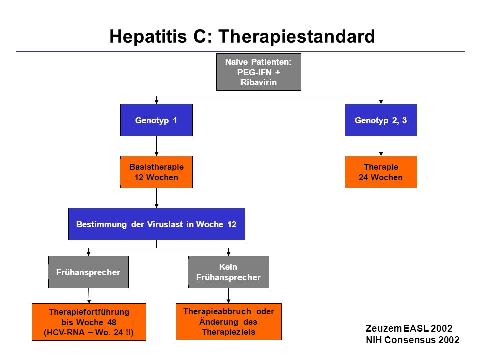Hepatitis C: Therapiestandard