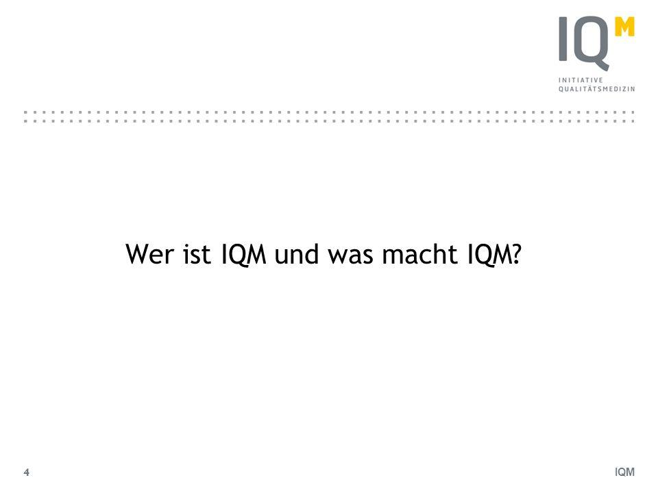 Wer ist IQM und was macht IQM