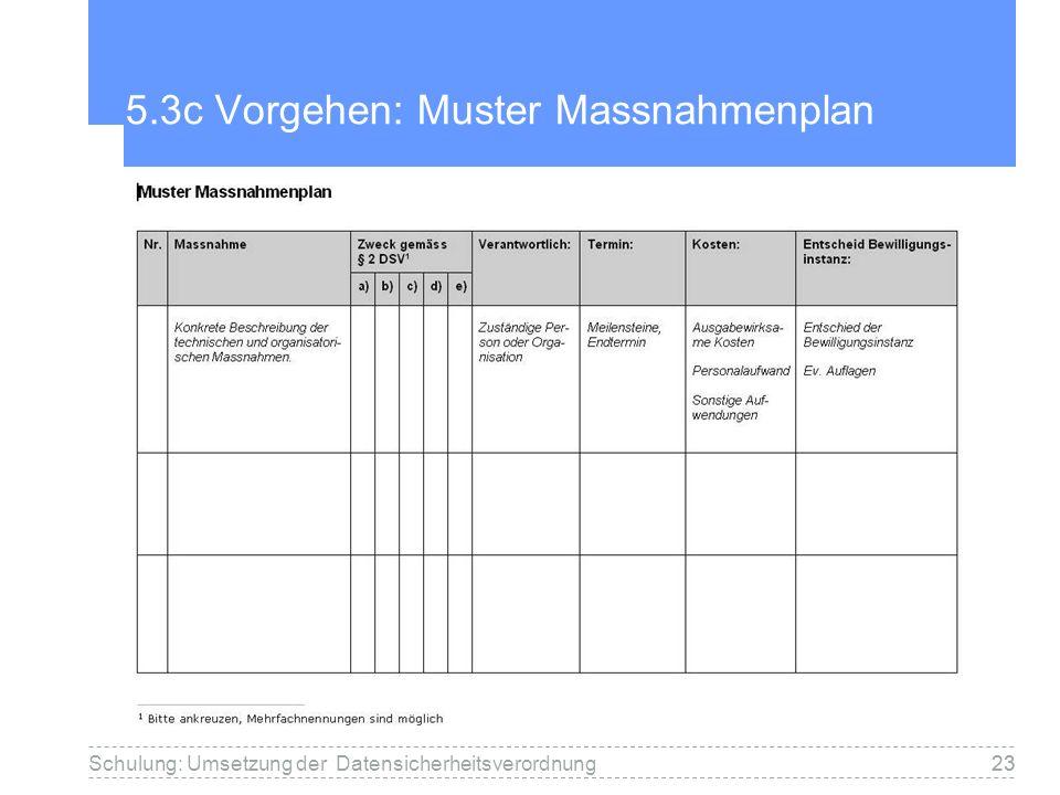 5.3c Vorgehen: Muster Massnahmenplan