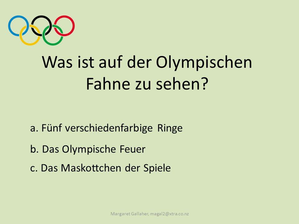 Was ist auf der Olympischen Fahne zu sehen